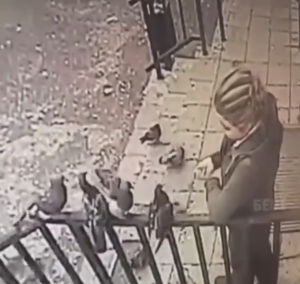 鳩に餌を与える女性