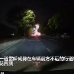 【海外ニュース】中国で強い雷が木に直撃、火花をあげる様子が撮影される。