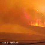 森林火災を走り抜けるドライブレコーダー